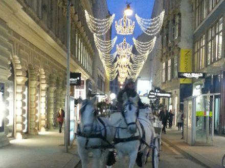 Elena Virgili - Mercatini di Natale Vienna e Graz